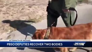 PBSO deputies recover two bodies
