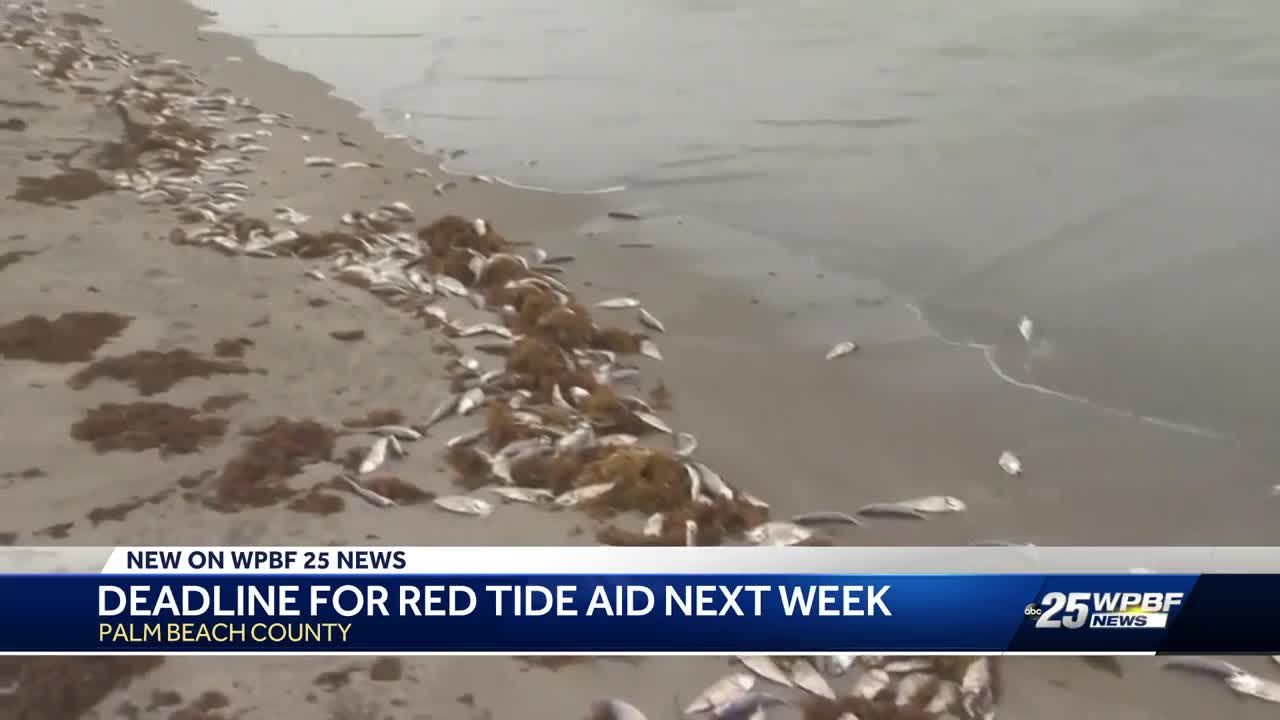 Deadline for red tide cleanup funding aid is approaching