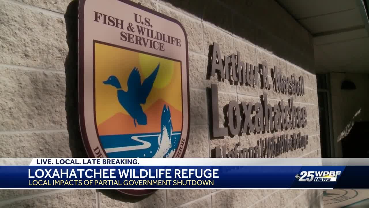Loxahatchee National Wildlife Preserve feeling impact of federal shutdown