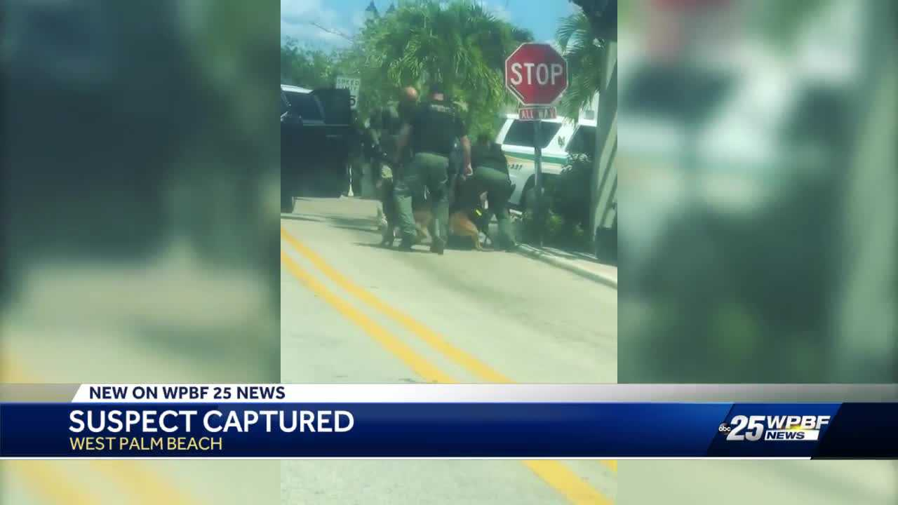 Police dogs nab shooting suspect in West Palm Beach - Palm