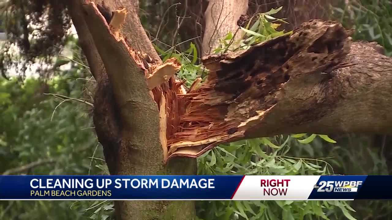 Cleaning up efforts in Palm Beach Gardens after Monday's storm