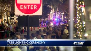 Palm Beach Tree Lighting