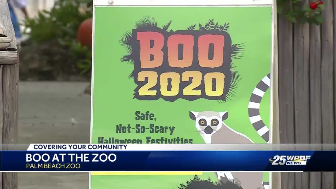 Palm Beach Zoo holds socially distanced Halloween event for kids